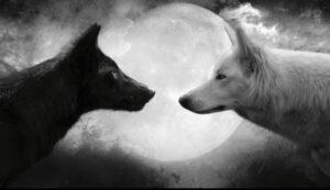 Parábola de los Dos Lobos