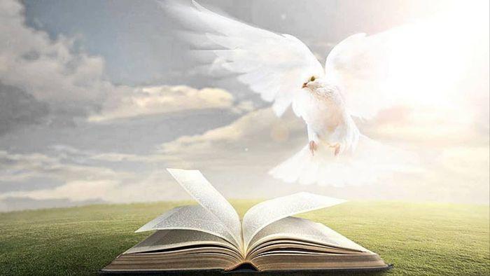 Cuáles son las manifestaciones del Espíritu Santo