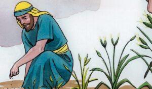 Parábola del Grano de Mostaza
