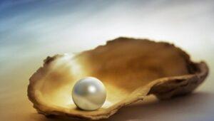 Parábola de la Perla Preciosa