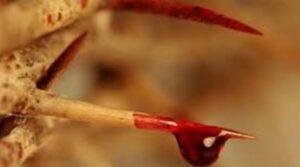 La Sangre de Jesús