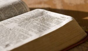 Cuál es La Importancia de la Biblia